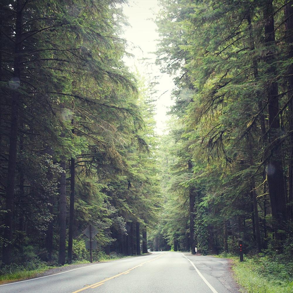 US Pacific Coast, California