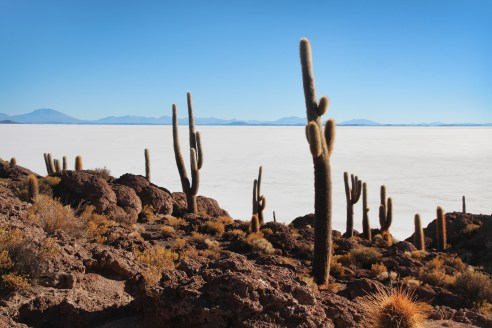 Exploring Uyuni: The largest salt flats in the world