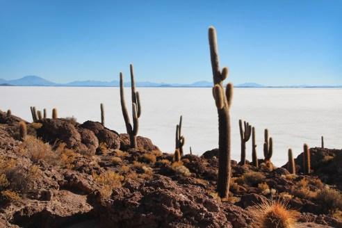Exploring Uyuni: The largest salt flats in the world