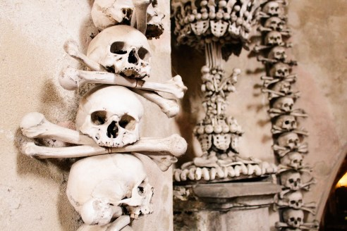 Discovering horror in a chapel of bones