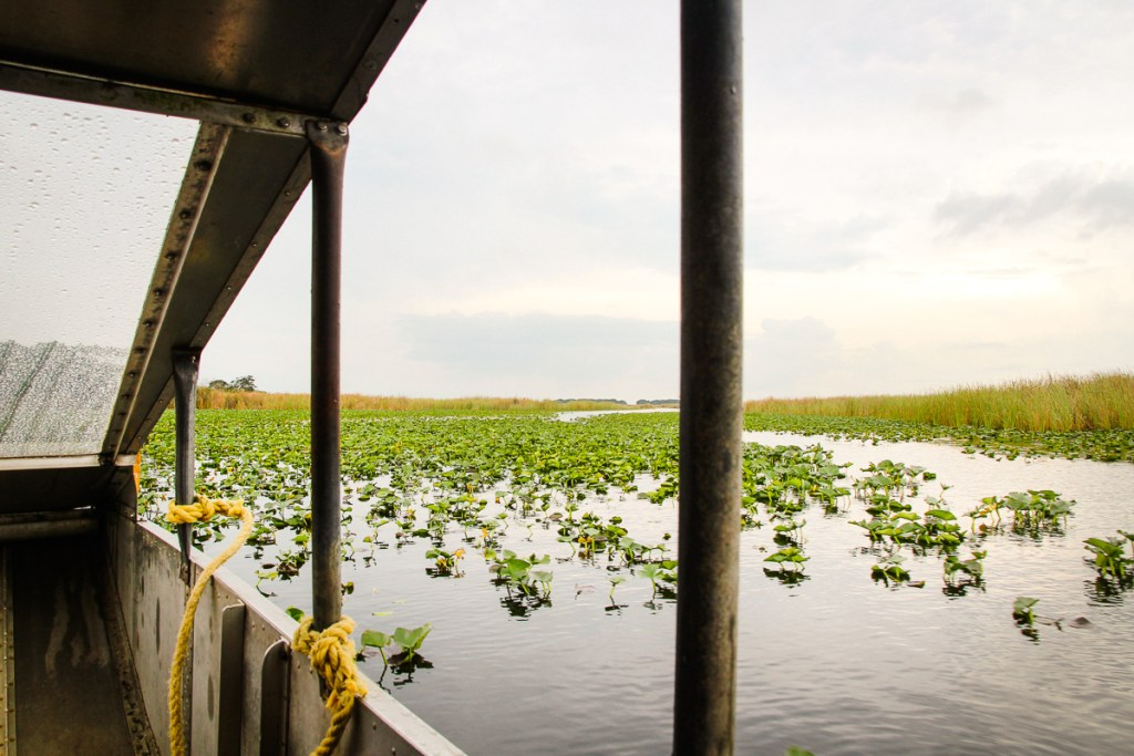 Airboat tour in Everglades National Park, Florida