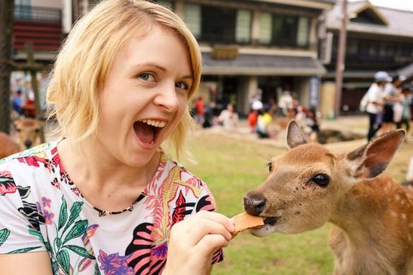 Feeding the deer in Nara