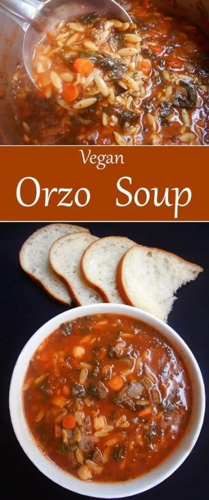 Vegan orzo soup