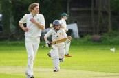 cricket-724622_640