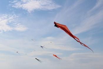 Kites near Steveston Village
