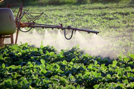 EPA Announced Dicamba Label Changes