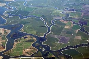 Bay-Delta Water