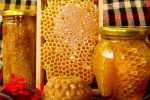 bees honey and honeycomb
