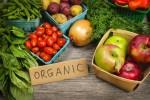 Organic market fruits and vegetables millennials