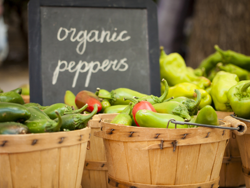 Fresh organic food at the local farmers market. Farmers markets are a traditional way of selling agricultural products.