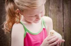 beautiful girl with baby chick