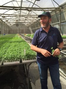 A greenhouse in Israel.
