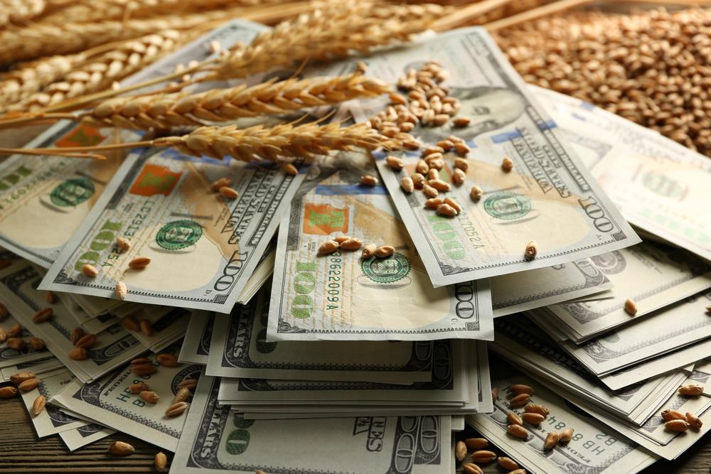 Картинки по запросу зерно деньги