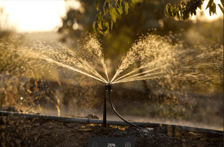 To schedule irrigations with a pressurized irrigation system (drip, microsprinkler or solid-set sprinklers), growers can enter all the basic information from their orchard in one place, and the tool will calculate how much irrigation water is needed based on those specific conditions using the seasonally relevant almond crop coefficient.