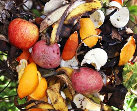 Compost pile in a backyard garden