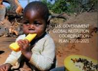 Global Nutrition Coordination Plan