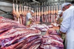Meat and Steak Processing
