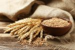 Ears of wheat and bowl of wheat grains-wheat industry