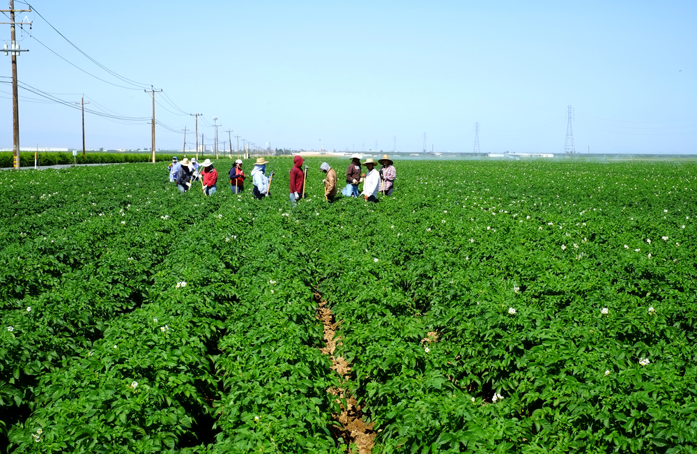 Labor, Guestworker Programs Lead Sustainable Ag Expo