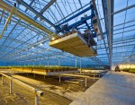 investments agriculture-technology-robotic-pick-and-place-unit-in-a-tungsten-lit-glasshouse