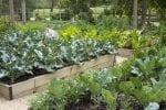 gardens good climate