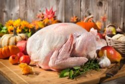 five tips buy turkey