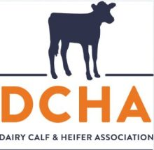 dcha-dairy-calf-heifer association