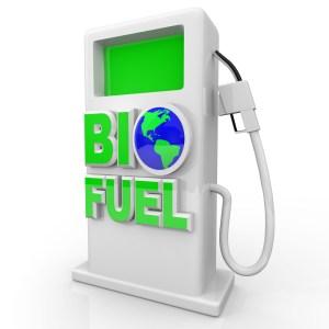 legal biodiesel