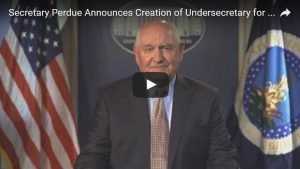 undersecretary