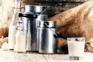 dairy marketing agency