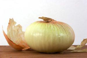 vidalia onion crop
