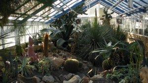 thermal garden
