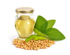 Soybean oil in a bottle with green pods and leaves.