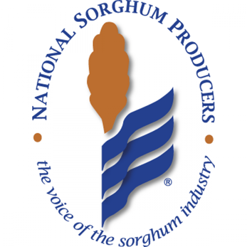 national sorghum