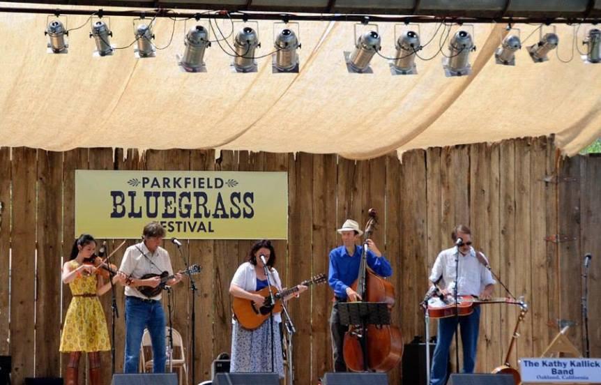 parkland bluegrass festival