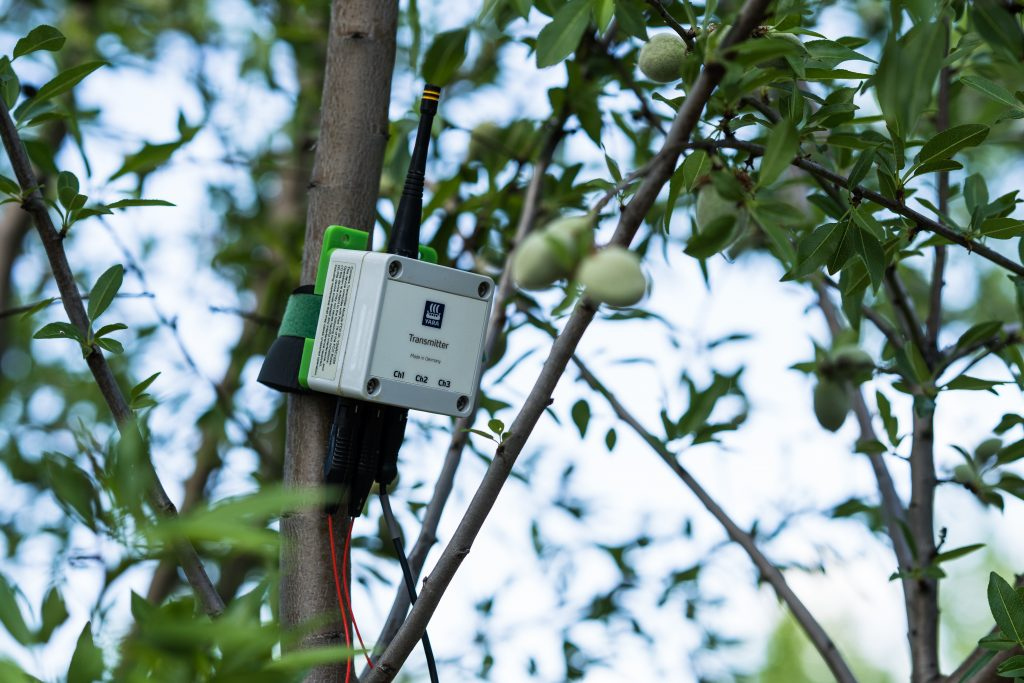 New Water Sensing Technology Coming to Almond Orchards