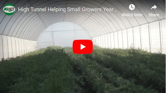 High Tunnels Helping Small Growers Year-round