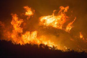 LNU Lightning Complex Fire -wildfires