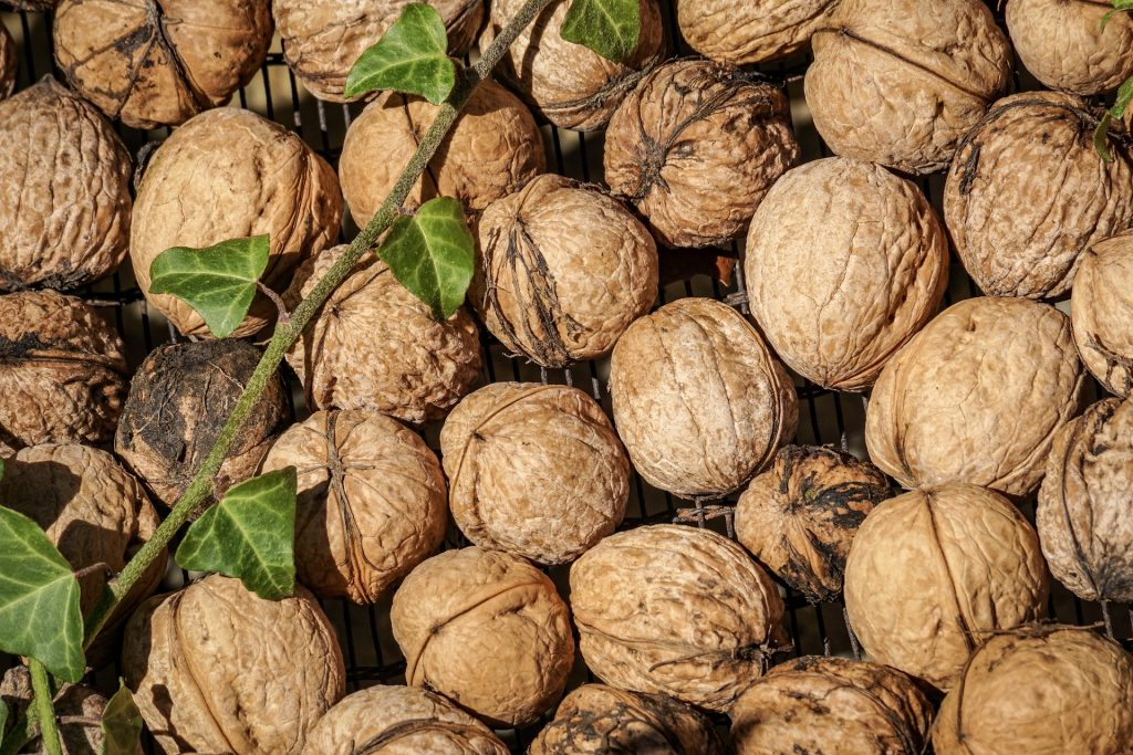 """Featured image for """"Mandatory Inspections Suspended for California Walnuts"""""""