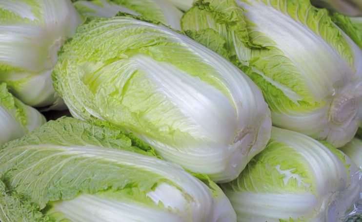easy grow exotic flavorful cabbage