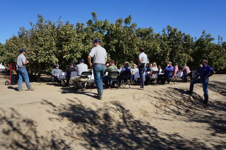 Yara Incubator Farm Discussion