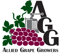Allied Grape Growers glass fire