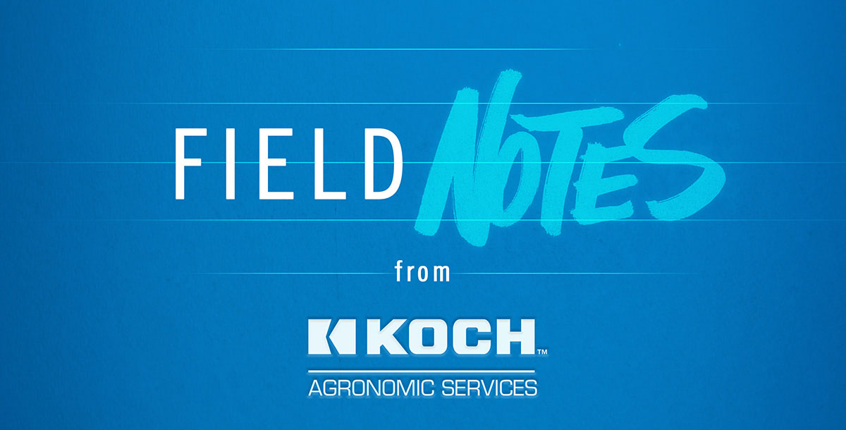 Field Notes from Koch Agronomic Services