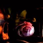 Vanité à la rose et au sablier
