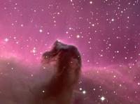 Туманность ''Конская голова'' в созвездии ''Орион''.