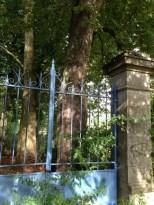 Ancienne porte de domaine
