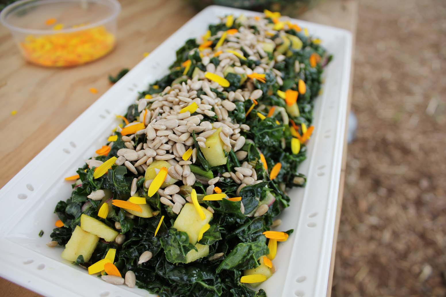 Kale Salad Recipe with Apple and Dried Sour Cherries