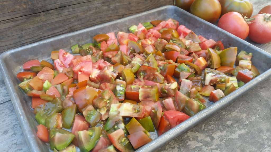Dicing and Freezing Tomatoes