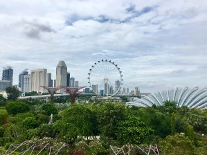 views-from-gbtb