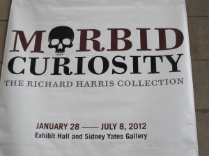 Morbid Curiosity Sign